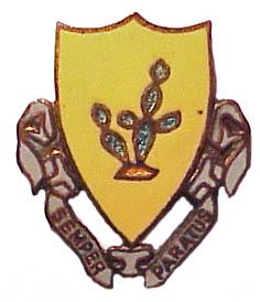 12th Cavalry DI